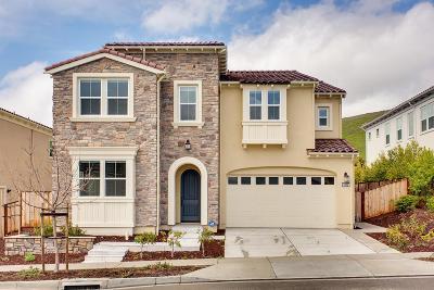 San Ramon Single Family Home For Sale: 3005 Montbretia Way