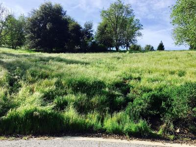 Gilroy Residential Lots & Land For Sale: 2320 Wildrose Ct