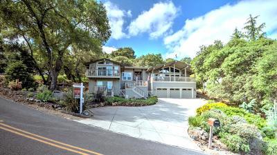 Morgan Hill Single Family Home For Sale: 17285 Copper Hill Dr