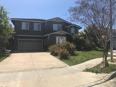 SAN JOSE Single Family Home For Sale: 2978 Delancey Ct