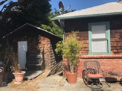 Santa Cruz Single Family Home For Sale: 116 Mountain View Ave
