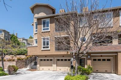 SAN JOSE Townhouse For Sale: 539 Marble Arch Ave