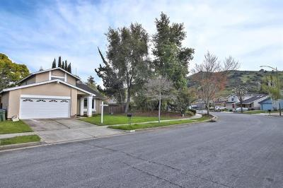 SAN JOSE Single Family Home For Sale: 262 N Creek Dr