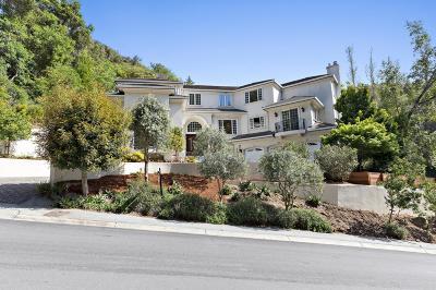 Hillsborough Single Family Home For Sale: 20 Crystal Springs Ter