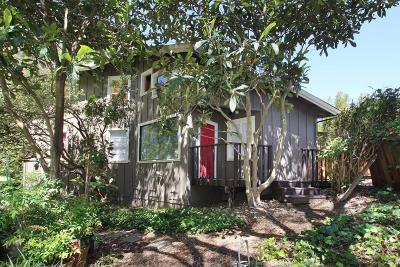 Santa Cruz County Single Family Home For Sale: 509 Buena Vista Ave