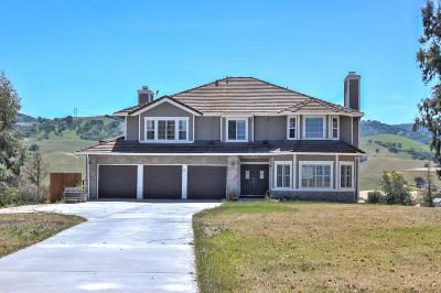 HOLLISTER Single Family Home For Sale: 95 McCary Dr