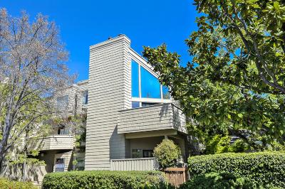 PALO ALTO Condo For Sale: 447 College Ave