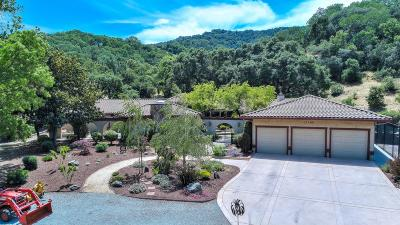 MORGAN HILL Single Family Home For Sale: 17285 Chesbro Lake Dr