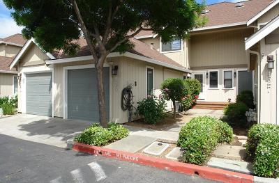 MORGAN HILL Townhouse For Sale: 425 Creekside Ln