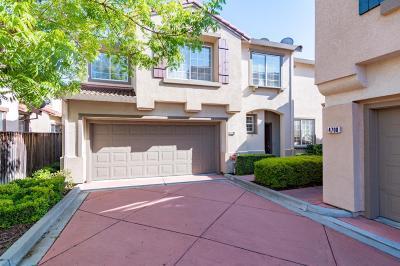 SANTA CLARA Single Family Home For Sale: 4706 Wilcox Ave