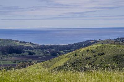 San Gregorio Single Family Home For Sale: 145 Bear Gulch Rd