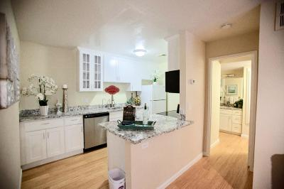 SAN JOSE Condo For Sale: 247 N Capitol Ave 287