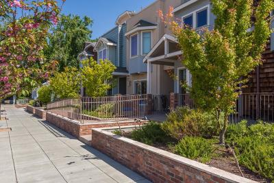 SAN MATEO CA Condo For Sale: $539,000