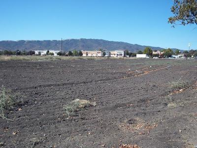 Santa Clara County Commercial Lots & Land For Sale: 1 Pacheco Pass Hwy