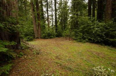 Santa Cruz County Residential Lots & Land For Sale: 14985 Fern Ave