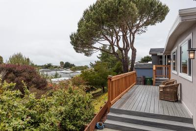 Half Moon Bay Mobile Home For Sale: 7 Oceanview Ave 7
