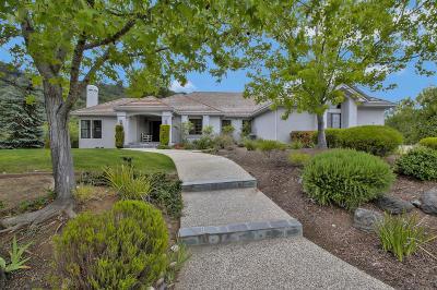 SARATOGA Single Family Home For Sale: 14128 Dorene Ct