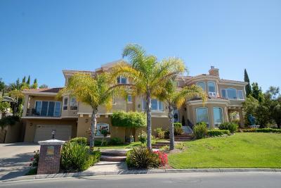 SAN JOSE CA Single Family Home For Sale: $4,699,888
