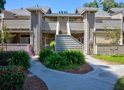 SAN JOSE Condo For Sale: 512 Shadowgraph Dr