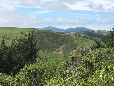 Half Moon Bay Residential Lots & Land For Sale: 000 Higgins Canyon