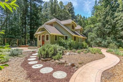 Santa Cruz Single Family Home Contingent: 550 Winter Creek Rd