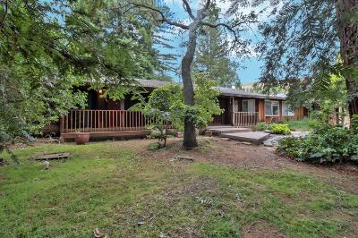 MORGAN HILL Multi Family Home For Sale: 12910 Watsonville Rd