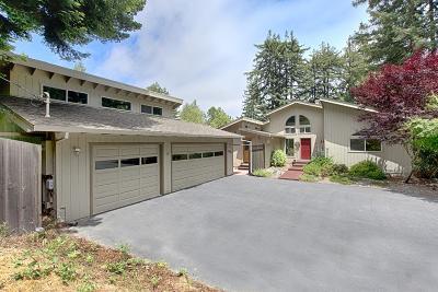 FELTON Single Family Home For Sale: 1295 Lost Acre Dr