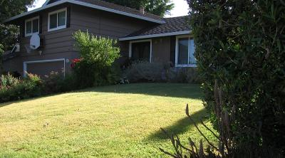 LOS GATOS Single Family Home For Sale: 224 Danville Dr