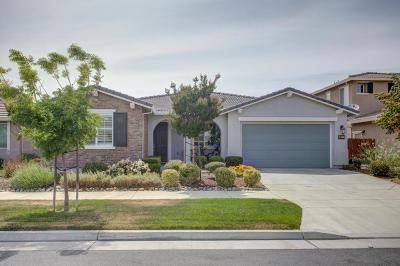 Gilroy Single Family Home For Sale: 9741 Comanche St