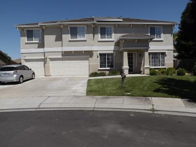 Manteca Single Family Home For Sale: 558 Laki Pl
