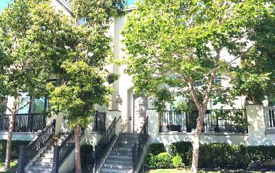 SAN MATEO Townhouse For Sale: 823 S Bayshore Blvd