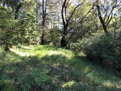 Los Gatos Residential Lots & Land For Sale: 0 Upper Zayante Rd