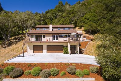 Santa Cruz County Single Family Home For Sale: 150 Meadow Haven Ln