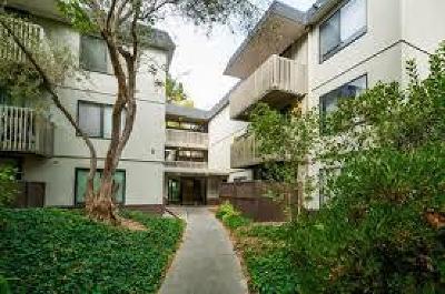 SAN BRUNO CA Condo For Sale: $439,000