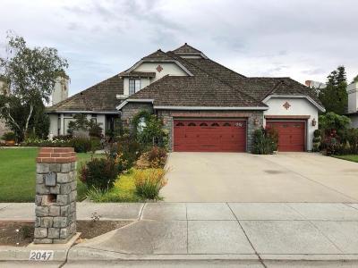 MORGAN HILL Single Family Home For Sale: 2047 Katybeth Way