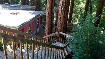 Boulder Creek Single Family Home For Sale: 370 Plumeria Ct