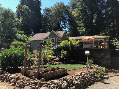 Santa Cruz County Single Family Home For Sale: 211 Reed St