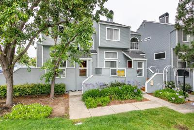 REDWOOD CITY Townhouse For Sale: 702 Portwalk Pl