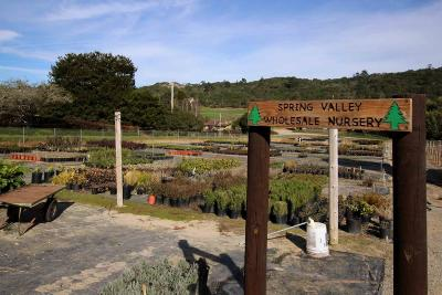 Santa Cruz County Residential Lots & Land For Sale: 170 Spring View Rd