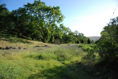 Santa Clara County Residential Lots & Land For Sale: 00 Wagner