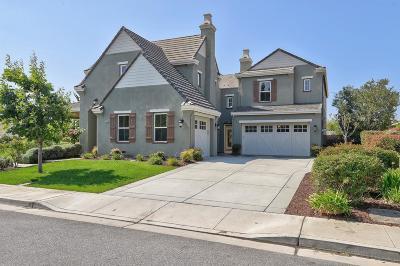 MORGAN HILL Single Family Home For Sale: 18605 Arguello Ave