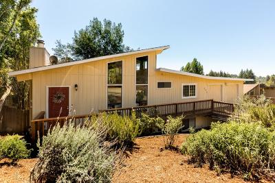 Scotts Valley Single Family Home For Sale: 240 Tabor Dr