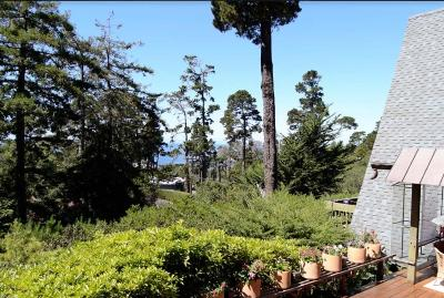 Carmel Highlands Single Family Home For Sale: 119 Oak Way