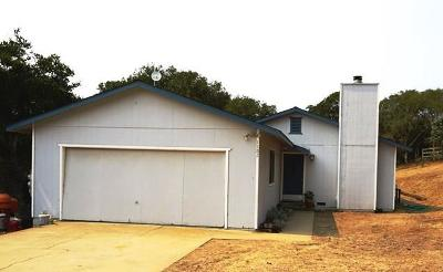 SALINAS Single Family Home For Sale: 1182 Via Del Sol Rd