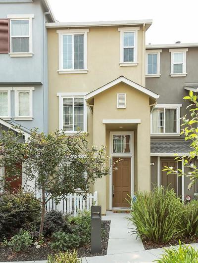 Mountain View, Sunnyvale Townhouse For Sale: 195 Darya Ct