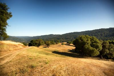 LOS GATOS Residential Lots & Land For Sale: 19400 Montevina Rd