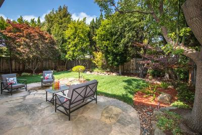Foster City Single Family Home For Sale: 1023 Avalon Ave