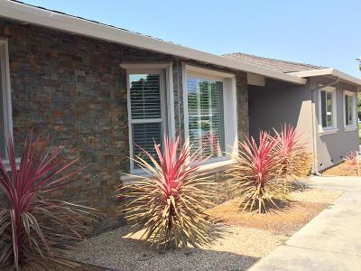 Santa Clara Single Family Home For Sale: 2647 Birchtree Ln