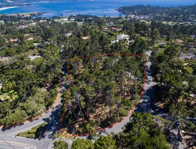Pebble Beach Single Family Home For Sale: 3920 Ronda Rd