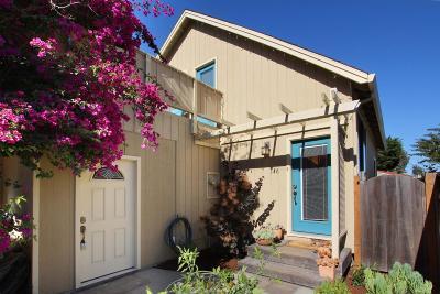Santa Cruz Single Family Home For Sale: 146 Surfside Ave
